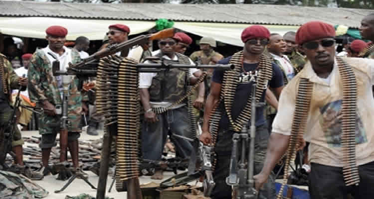 Amnesty: We Are Not Owing Ex-militants, Says FG