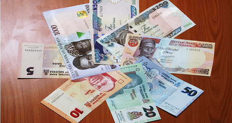 Image result for New Naira Notes